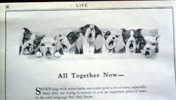SEVEN BOSTON TERRIER DOGS SINGING REPRINT BY ROBERT DICKEY 6 1 4 x 11
