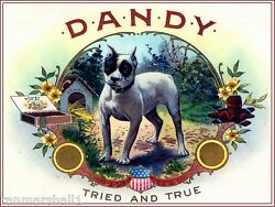 Dandy Boston Terrier Puppy Dog Vintage Tobacco Cigar Box Crate Label Art Print