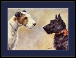 English Picture Print Scottish Wire Fox Terrier Dog Art Poster