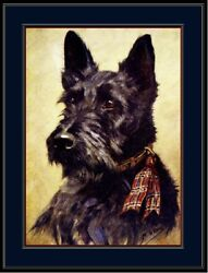 English Picture Print Scottish Terrier Puppy Dog Dogs Head Vintage Poster Art