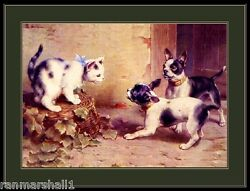 English Print Boston Terrier Dog Cat Kitten Picture Art