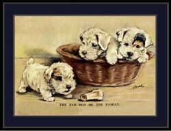 English Picture Print Wire Fox Terrier Puppy Dog Puppies Dogs Vintage Poster Art