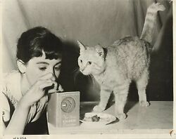 Millie Perkins And Mouschi The Cat In The Diary Of Anne Frank Original 1959