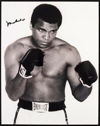 Muhammad Ali The World#x27;s Greatest Boxer Art Print Wall Poster 30quot;x24quot; 011