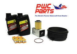 Seadoo Spark Brp Oil Change Kit Ace 900 Filter Cr8eb Spark Plugs Wear Ring New