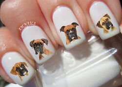Boxer Dog Nail Art Stickers Transfers Decals Set of 56