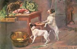 Postcard  Naughty Jack Russell Fox Terrier Puppy Dogs & Cat Samson 1907 Germany