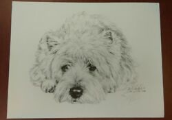 WEST HIGHLAND TERRIER Westie Pencil Drawing Print Signed Lyn St Clair Stubbs