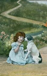 Rare Dog Postcard Smooth Fox  Jack Russell Terrier Kissing Child Germany c1908
