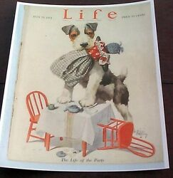 FOX TERRIER LIFE OF THE PARTY WITH DOLL  1921 LIFE MAGAZINE COVER REPRINT