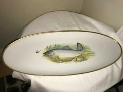 Hutschenreuther Selb Germany Painted Fish Platter And Plate Set 17 Pc