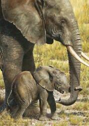 Carl Brenders Baby Mine African Elephants Giclee Canvas Artist Proof A/p3/40