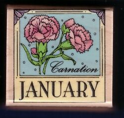 JANUARY CARNATION NEW Flower Month Border Calendar Hero Arts B480 Rubber Stamp
