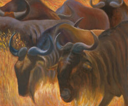 Animals Africa Oil Painting On Canvas Original Gnu In The Wild Fine Art Anat