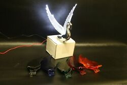 Flying Swan 40and039s 50and039s Hood Ornament Custom Hot Rod Truck Variety Wings White Led