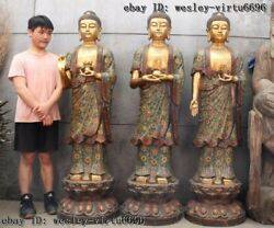 Bronze Cloisonne Three Saints Of The West Tathagata Amitabha Buddha Statue Set