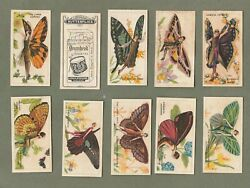 Cigarette Tobacco Cards Set 1928 Butterfly Girls Very Pretty Images Rare Rare