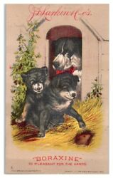 1882 J.d. Larkin And Co. Boraxine Puppies Looking For Mouse Victorian Trade Card