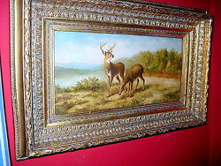 Vintage Oil Painting White Tailed Deer Buck And Doe Giovanni Roy