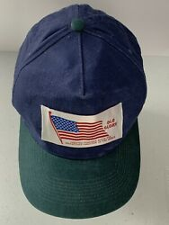 Old Glory American Flag Vintage Ball Cap Color Block Hat One Size Otto Brand