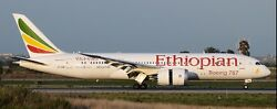 Boeing 787-8 Ethiopian Airlines Dreamliner Wood Model Free Shipping Large