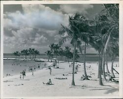 City Hall Miami News Fl Gratis Beautiful Sandy Beaches Palm Trees Photo 8X10