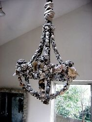 Shell And Coral Seashell Encrusted Grotto Chandelier By Kari Jeanne Lobdell