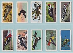Trade Cards - Canadian/american Songbirds Brooke Bond And Co. Ltd. - Full Set