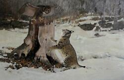 Marcel Bordei Back Off Owl And Bobcat Oil On Board Signed