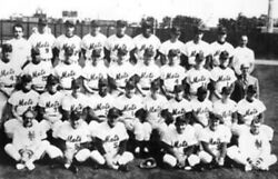 Unknown Artist 1962 New York Mets Team Reproduction Photograph