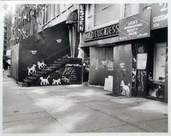 Peter Mayer New York City Deli With Dogs Gelatin Silver Print