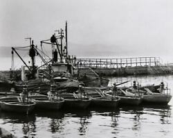 Theodore Cohen Boats In Harbor Photograph