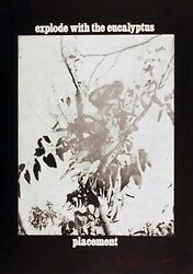 Les Levine, Explode With The Eucalyptus, Photo-etching, Signed And Numbered In P