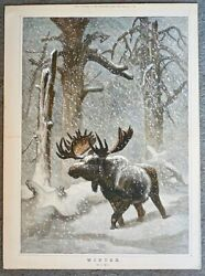 Antique Print, Winter, By J. Wolf, 1873, 54,5 X 40 Cm. Extra Supplement.