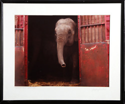 Jennifer Jill Ward, Traveling Circus, Brittany France, Color Photograph, Signed