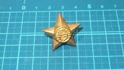 Empire Of Japan Land Defense Chapter Insignia Pin Badge Medal Military Antique