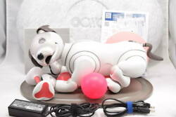 Very Rare Sony Aibo Ers-1000 Operation Checked Japan Used White Robot Dog
