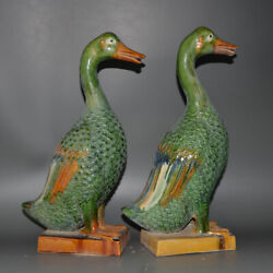 A Pair Chinese Tang Dynasty San Cai Pottery Duck Statues