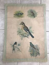 Original Vintage Zoological Pull Down School Charts Birds, Litograph , 2 Posters