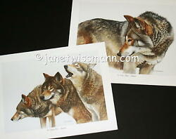 2 Fine Art Wolf Prints S/n Timberwolves Gray Timber Wolves Watercolor Paintings