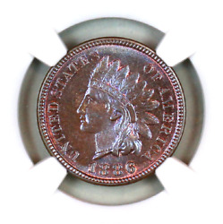 1886 Type 1 Ms65 Bn Ngc Indian Head Penny Premium Quality