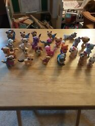 Lot Mini Dogs And Cats