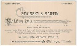 Taxidermy #x27;Naturalists#x27; Animal Mounts for Museums amp; Homes Chicago Business Card