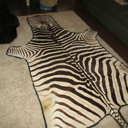Authentic African Zebra Skin Hide Rug Or Wall Hanging With Felt Backing