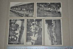 Empire Of Japan Postcard Guards Cavalry Regiment Japanese Army Military Antique