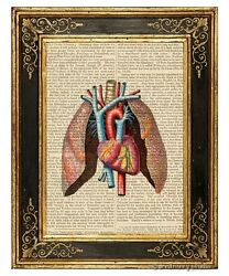 Heart And Lungs Art Print On Vintage Book Page Medical Anatomy Decor Gifts
