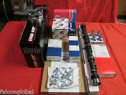 Cadillac 500 Deluxe Engine Kit Pistons+rings+torque Cam+valves 1974-76