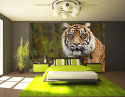 Giant Tiger Face Removable Full Wall Mural Photo Wallpaper Print Home 3d Decal