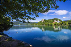 Paradise In Lake Bled Landscape 3d Full Wall Mural Photo Wallpaper Vinyl Decal