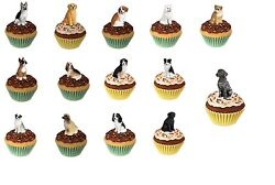 Adorable Pupcake Dog Trinket Box Figurine ~~ Many Breeds to Choose! Great Gift!